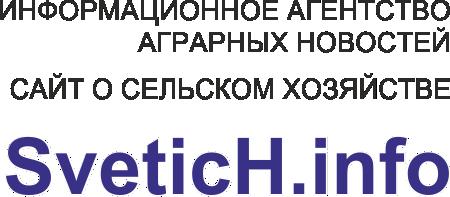 Федеральное информационное агентство «Светич»